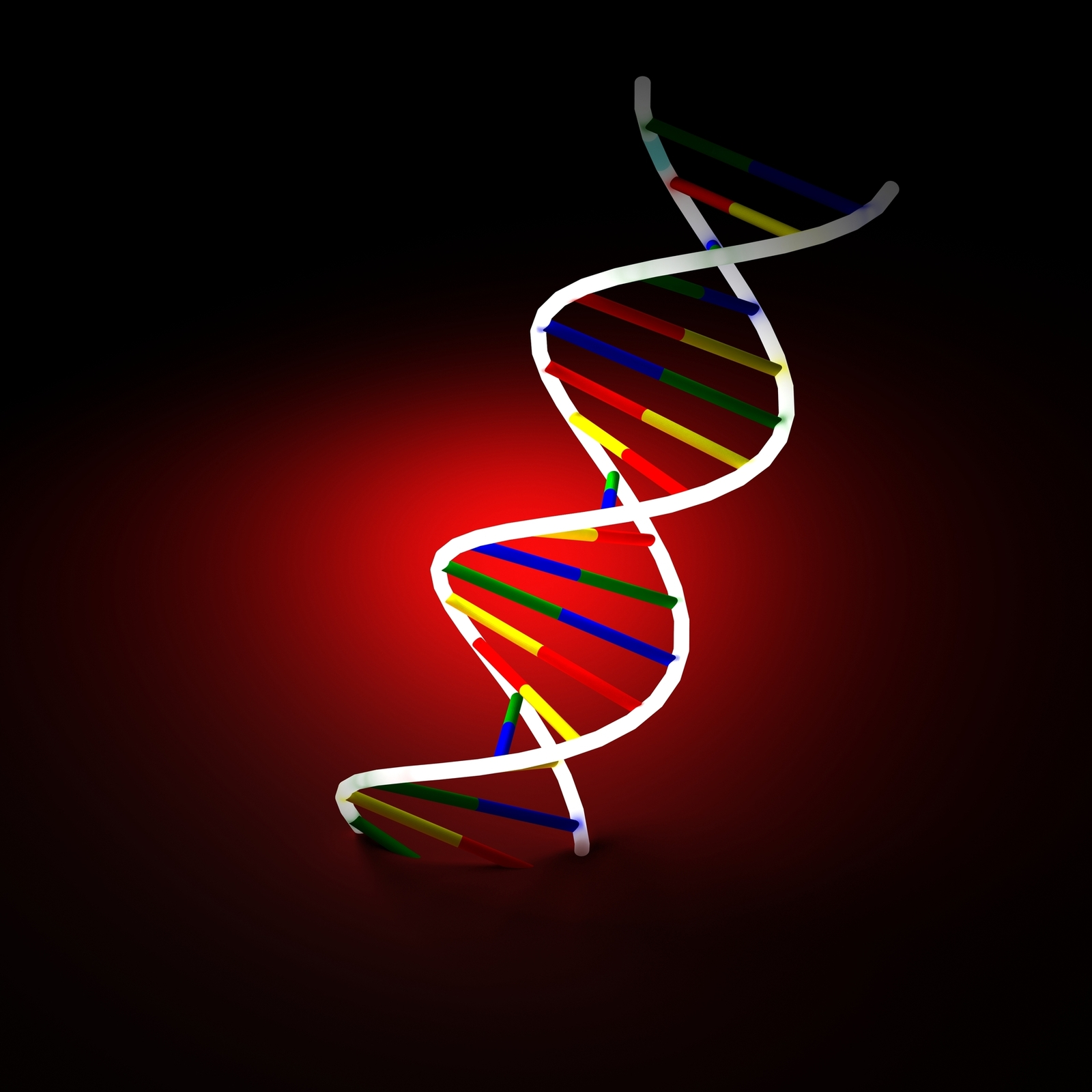 A multicolor digital recreation of a strand of DNA