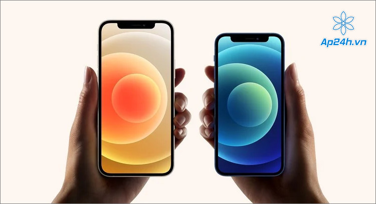 iPhone 12 Pro được ưa chuộng tại thị trường Mỹ và châu Âu