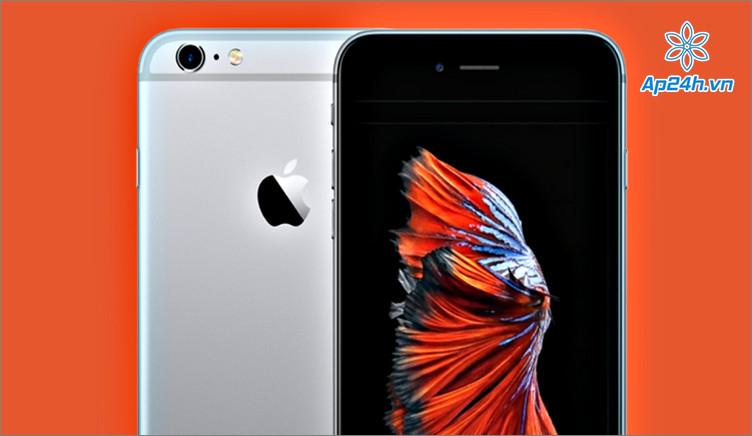 iPhone 6S và iPhone 6S Plus là mẫu điện thoại cực kỳ phổ biến hiện nay