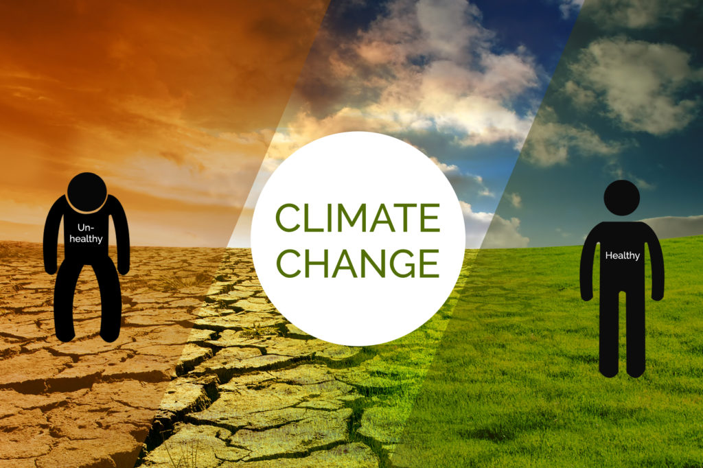Climate Change: Instant Expert - Learn Vocab in IELTS Reading