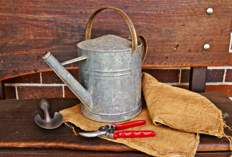 Watering can and secateurs