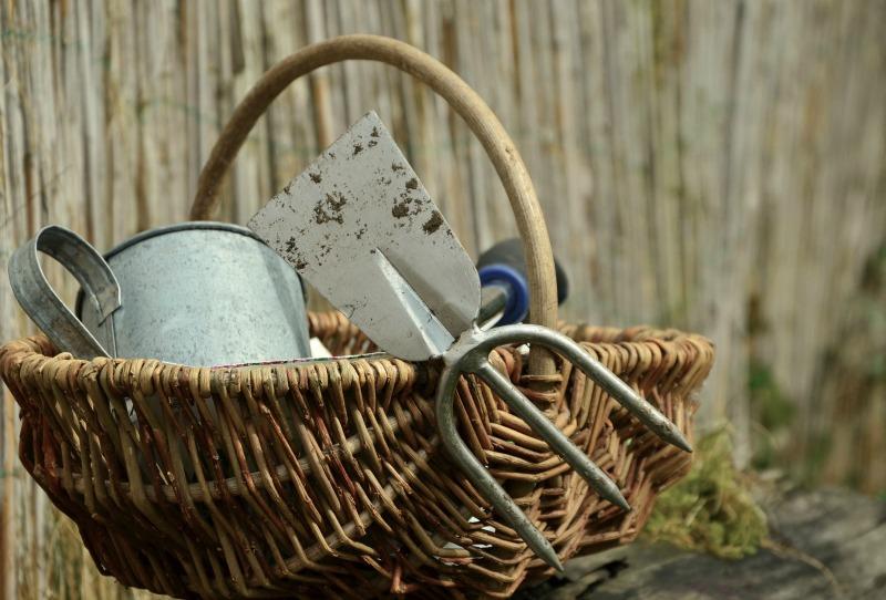 Gardening equipment in a basket