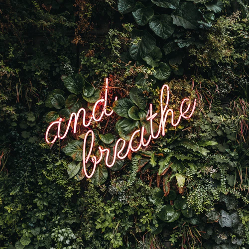 3 minute breathing space (a practice guide)