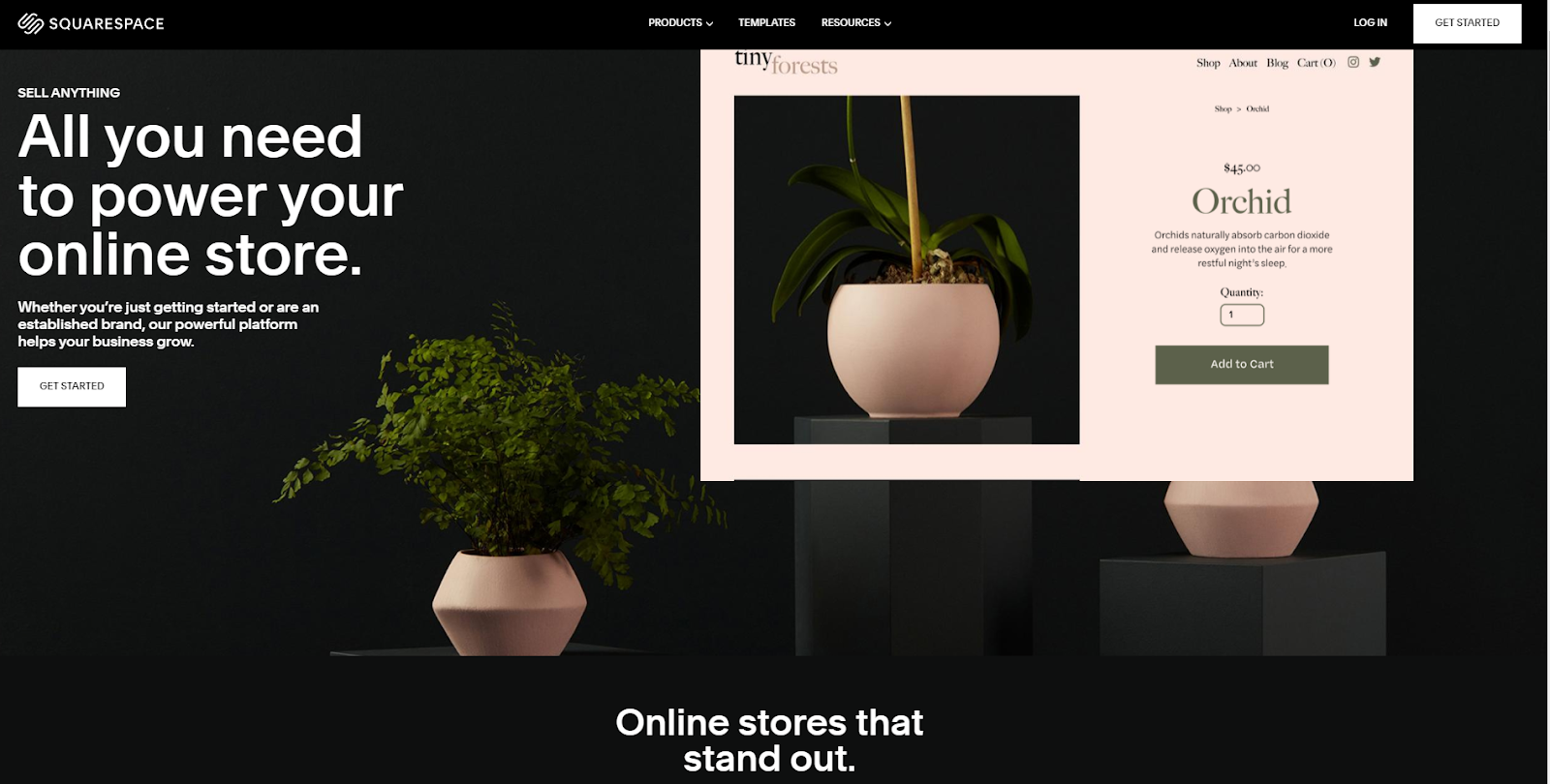 screenshot of Squarespace homepage