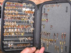 Кутията с мухи на Пенко Стоянов - Сливен