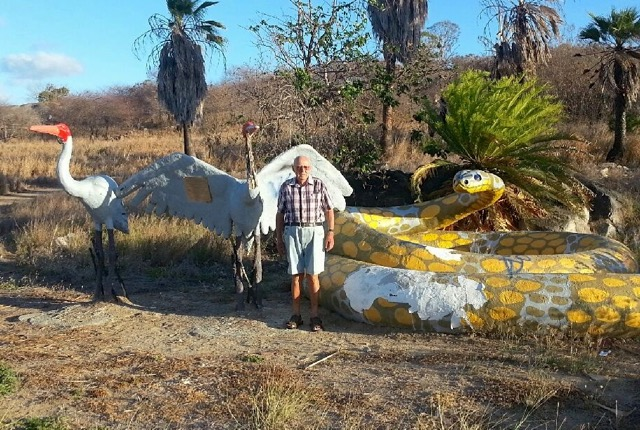 An elderly man standing near the big brolgas and snake