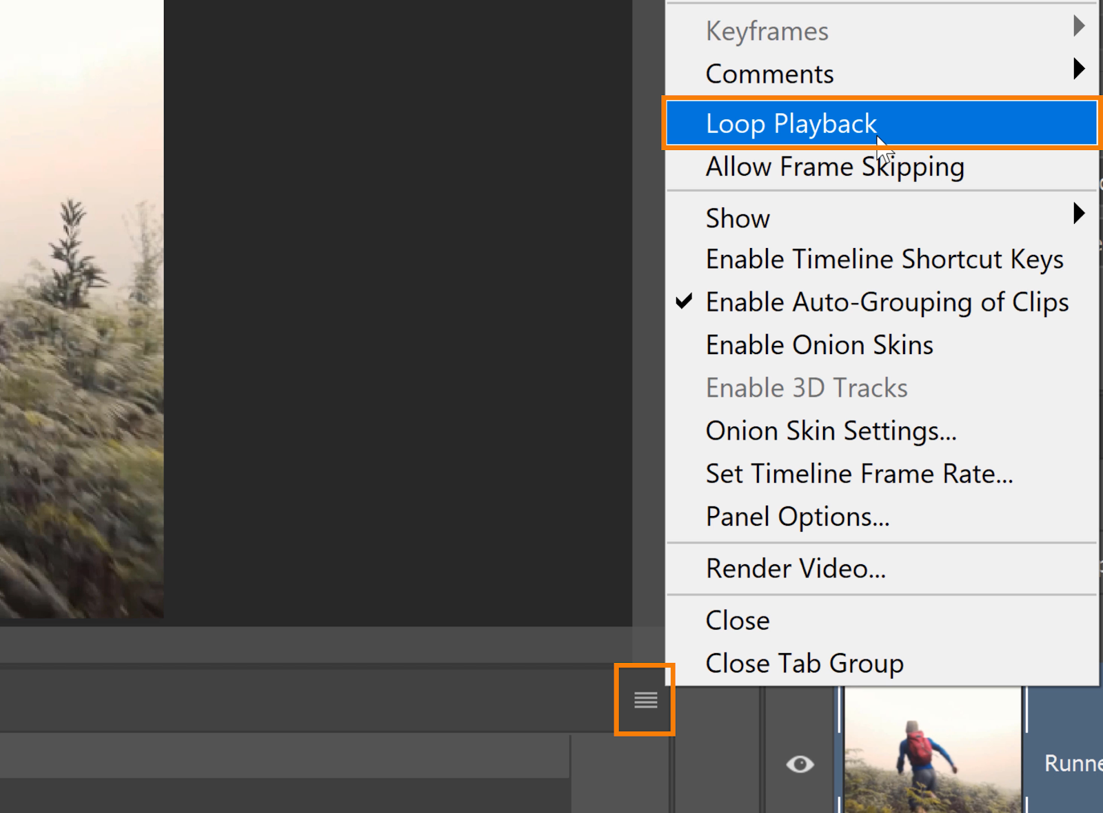 Click on the Options icon > Loop Playback.