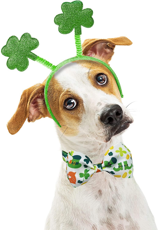 dog wearing St Patrick's Day headband and bowtie - St. Patrick's Day Dog