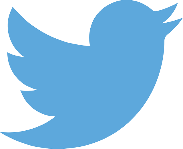 Twitter, Tweet, Twitter Bird,