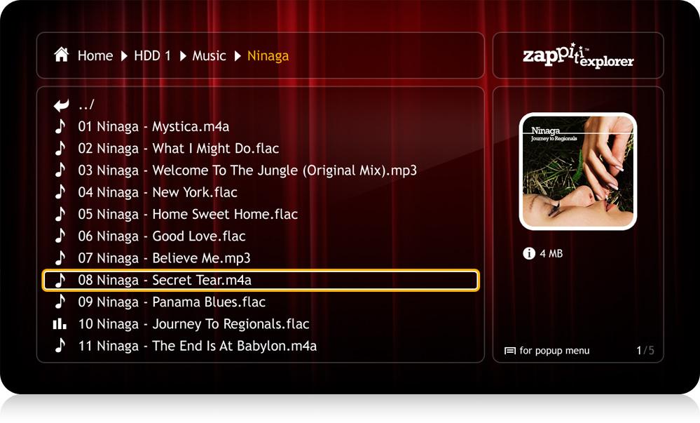 zappiti-explorer-classic-music-flac-alac-mp3-999x603jpg