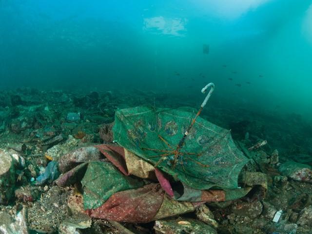Kết quả hình ảnh cho đảo rác
