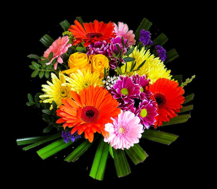 Free illustration: Flowers, Bouquet, Isolated - Free Image on ...