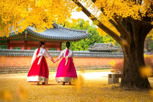 Hàn Quốc mùa thu lá vàng