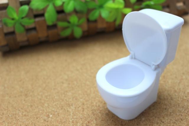 水道代の28%がトイレ、間違った節水していない?何処まで節水できるか検証。