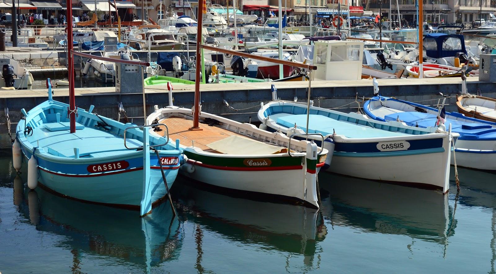 España propone monitorear las pescas accidentales a través de observadores