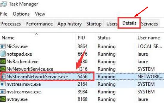 Nvstream network service