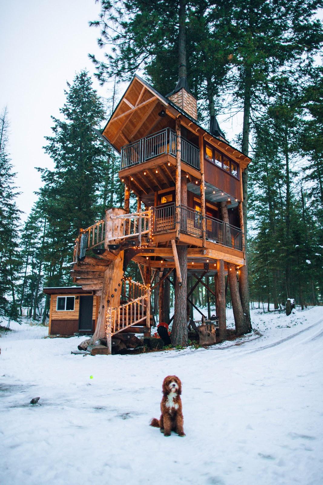 multi-story tree mansion treehouse