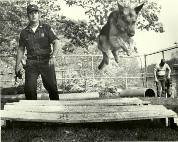 https://web.archive.org/web/20171017094902im_/http:/www.hopkintonpd.org/photogallery/History%20pics/2010-01%20(Jan)/Hank-Lucky.jpg