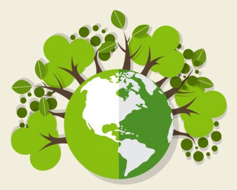 Znalezione obrazy dla zapytania ekologia'
