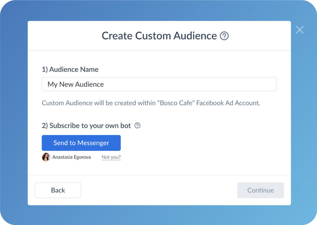 Naming custom audience in manychat