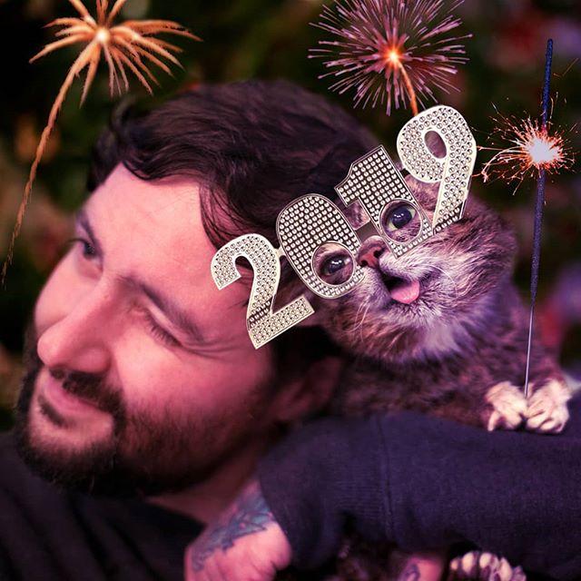 BUB's wishing you the best year of your life so far. #happynewyear #2019 #lilbub