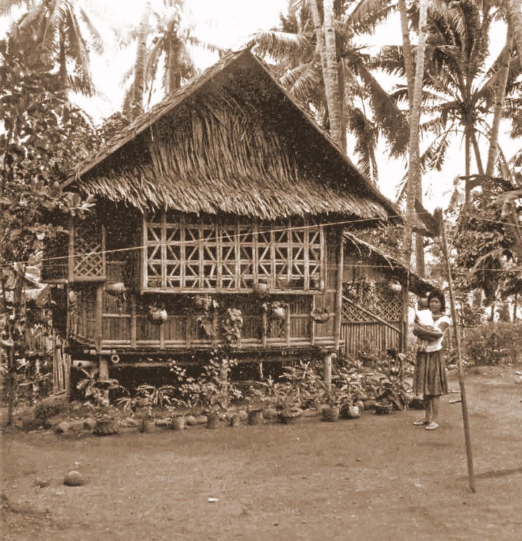 Hut Design: I've Something To Share...: Evolution Of Bahay Kubo