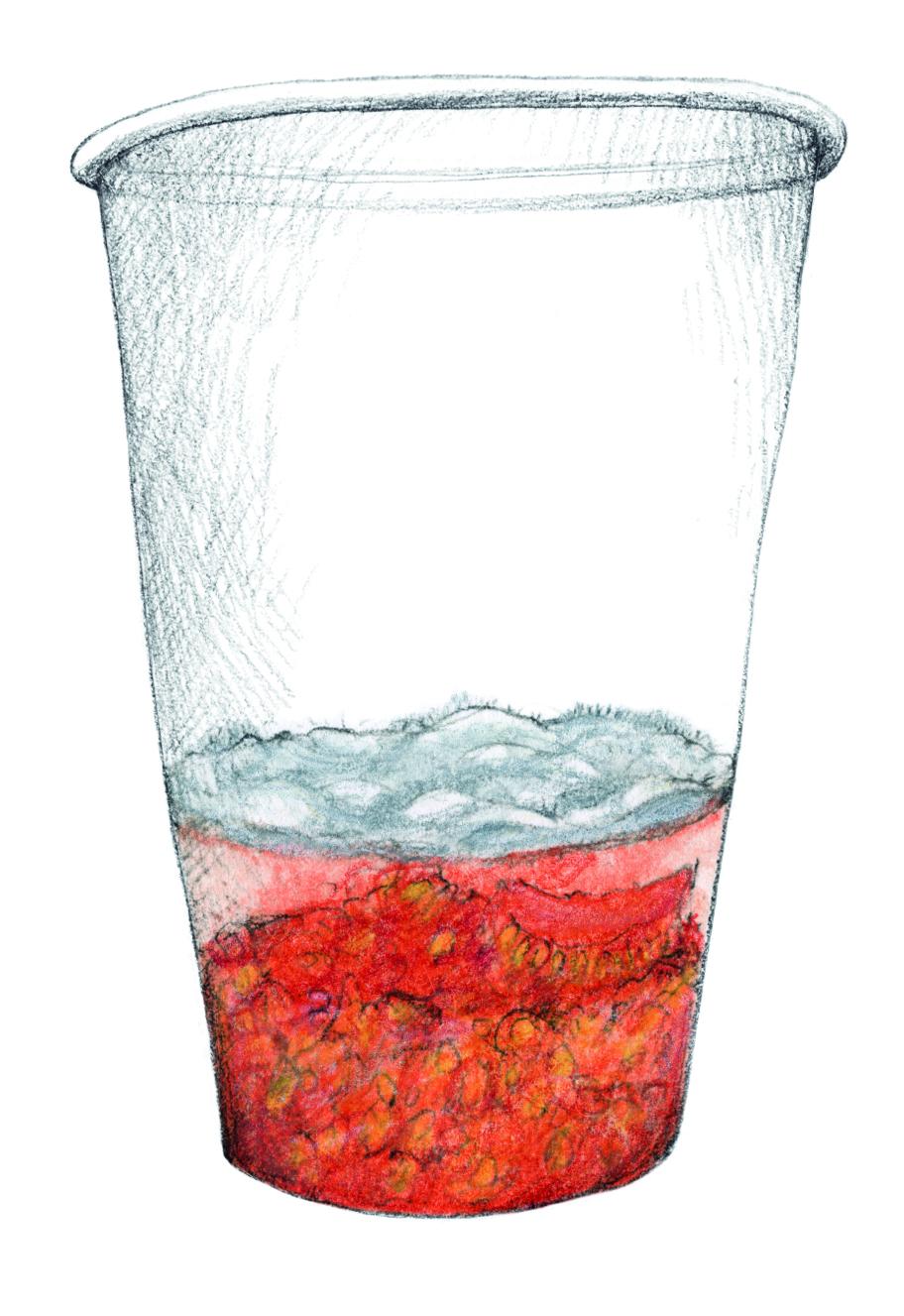 E4 III ferment couleur.jpg