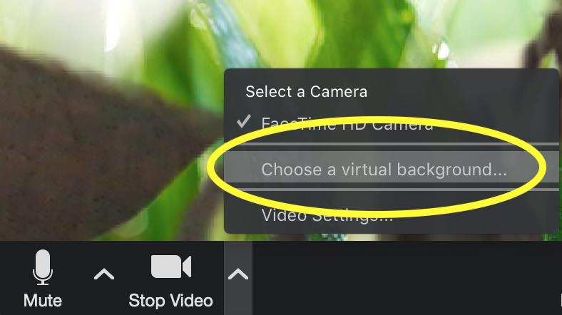 choose a virtual background screenshot