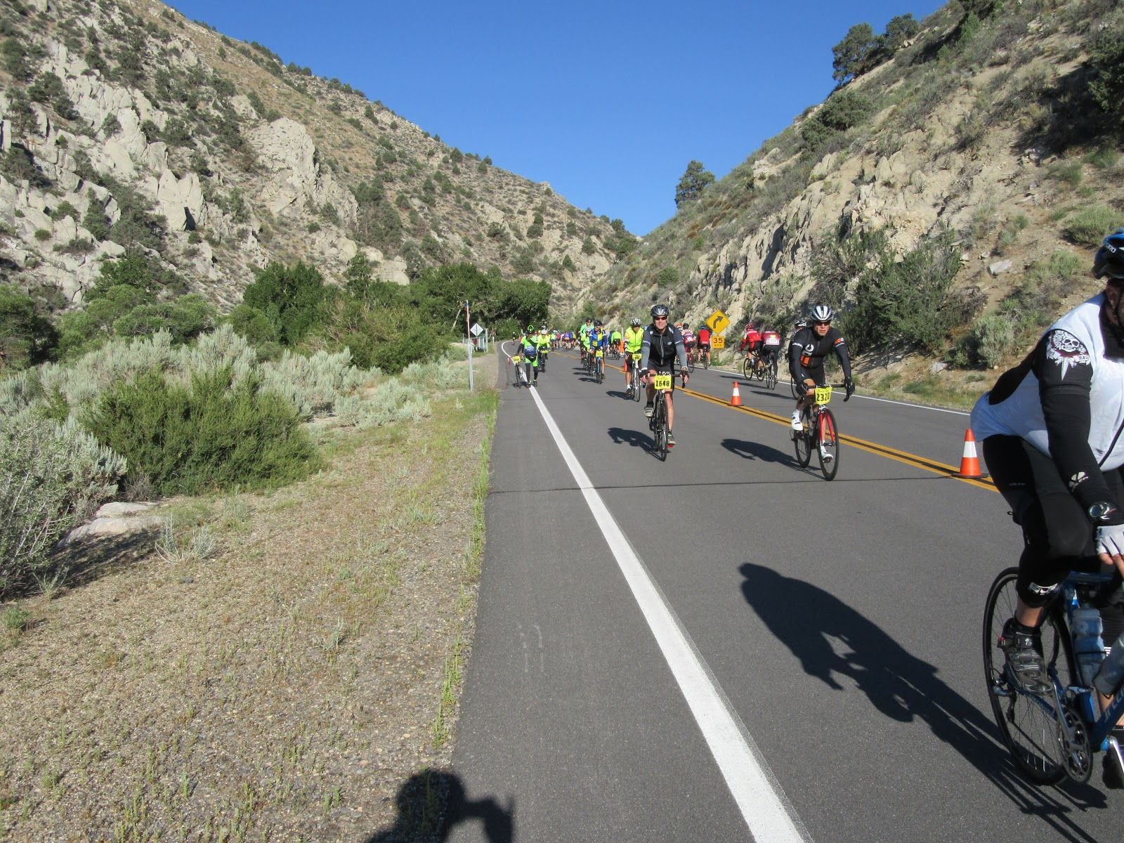 Climbing Monitor Pass East  by bicycle - Death Ride cyclists descending through canyon