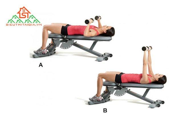 Đẩy tạ đơn trên ghế thẳng (Dumbbell Bench Press)