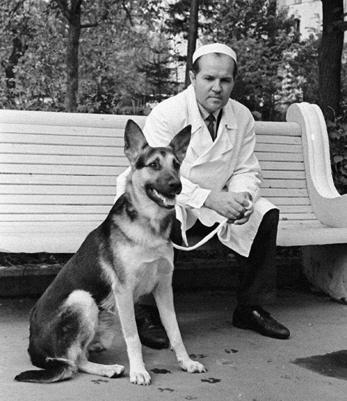 Доктор Демихов с одним из своих пациентов.