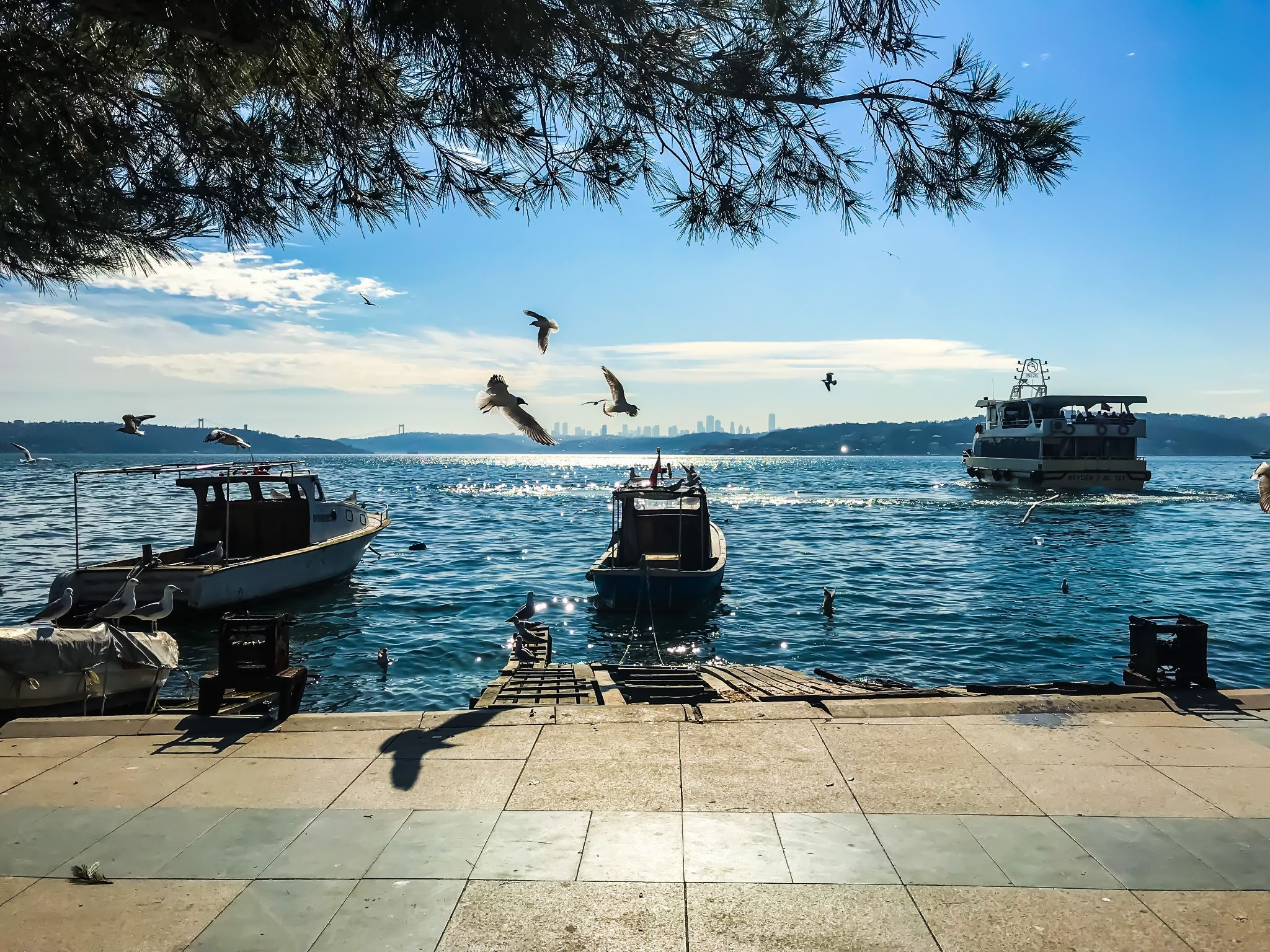 how much does it take to get a digital nomad visa in Turkey?