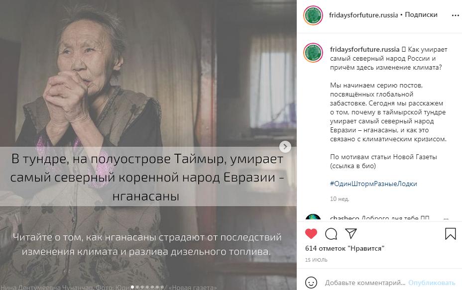 Публикация российского движения Fridays For Future.