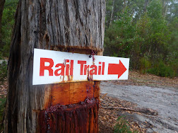 Dorset Rail Trail - Update