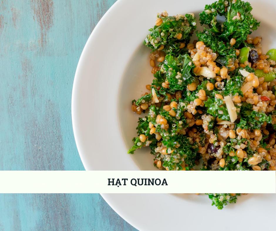 Hat quinoa có thể thay thế protein từ thịt