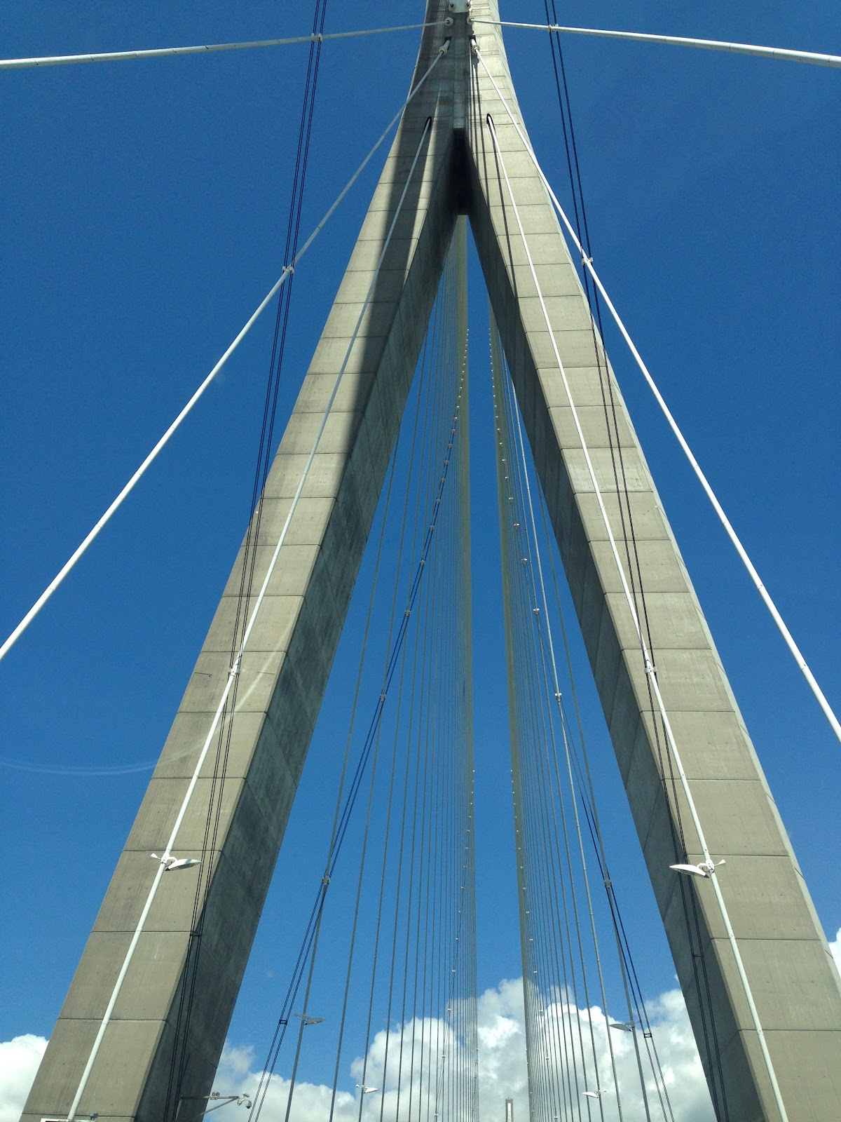 pont de normandie modern bridge, detail closeup photo of the bridge's rods and support elements on a clear day in france.