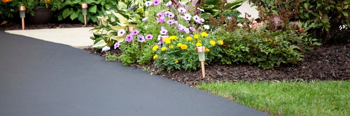Tidy landscaping to the side of a blacktop driveway.