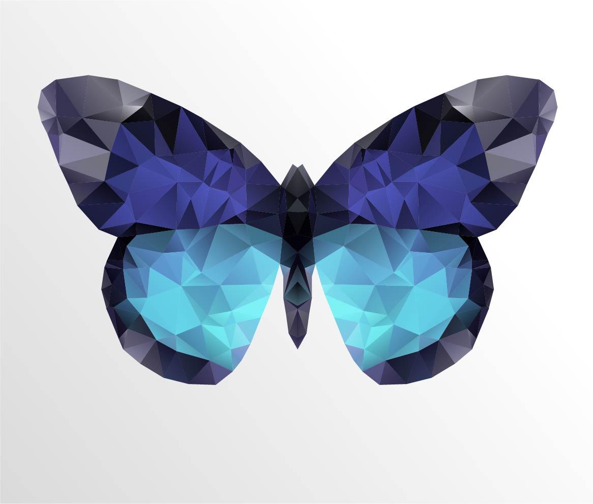 de leffet papillon en marketing le lead nurturing - Image De Papillon