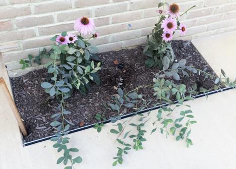 concrete landscaping drain