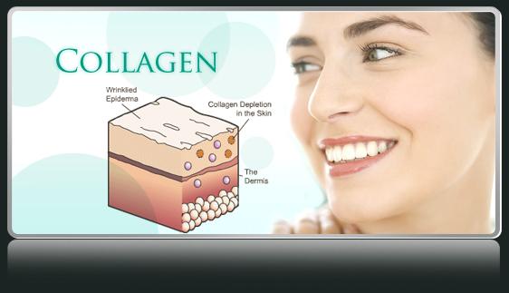 collagen-uong-la-gi