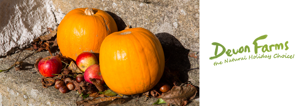 Enjoy some festive fun this Halloween while on holiday in Devon for the October Half Term.
