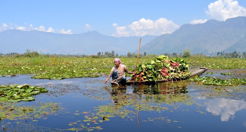 Wular Lake, Kashmir Valley