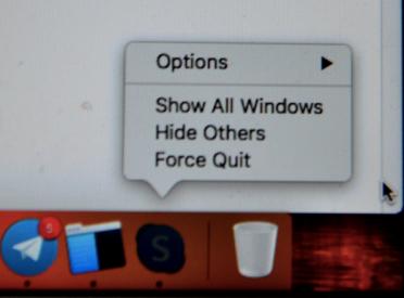 "A menu view with the pressed ""Alt"" key - Mac"