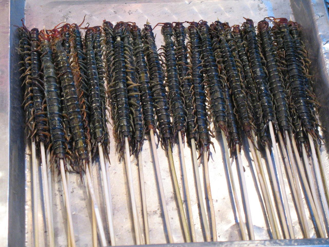 https://upload.wikimedia.org/wikipedia/commons/thumb/f/f8/Centipedes_as_street_food.jpg/1280px-Centipedes_as_street_food.jpg