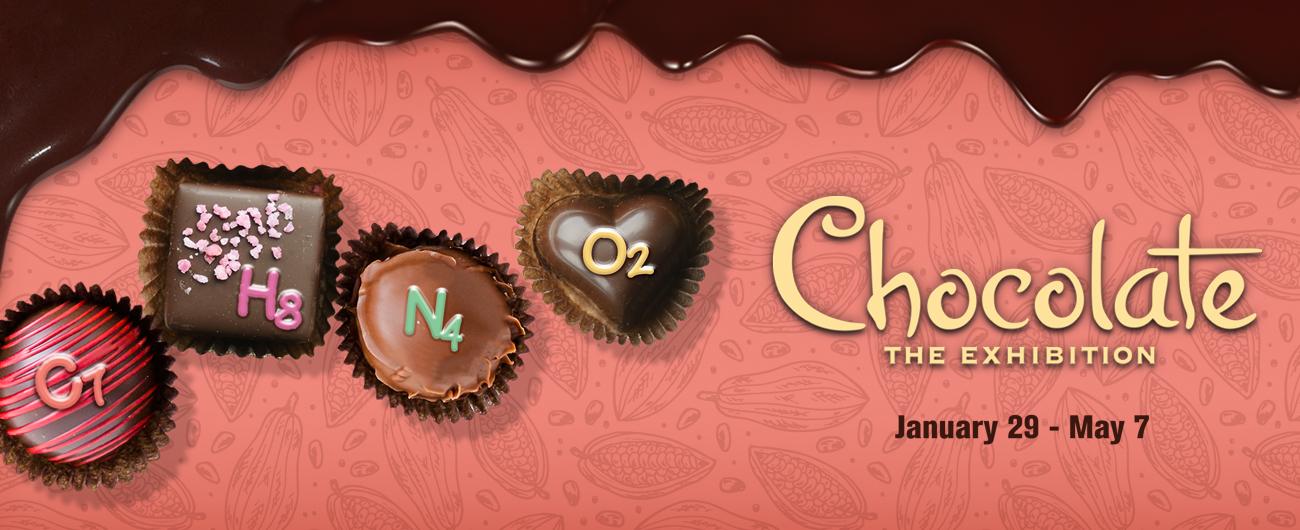 CHOCOLATE_FORMULA_WEBGRAPHIC.jpeg