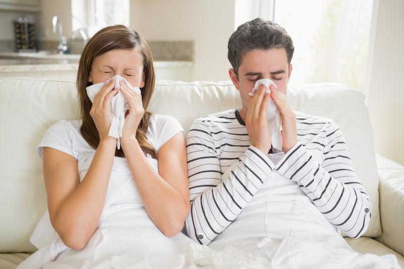 Как вылечить простуду. Изображение номер 1
