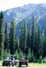 BC wilderness