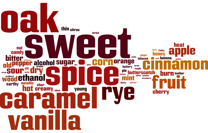 ceht sb word cloud.png