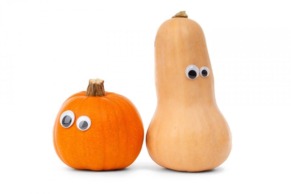 Pumpkin, White, Cute, Diet, ...