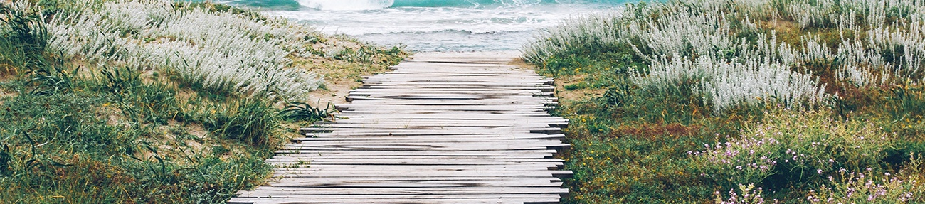 pv beach.jpg
